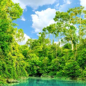 kinabatangan-river1.jpg